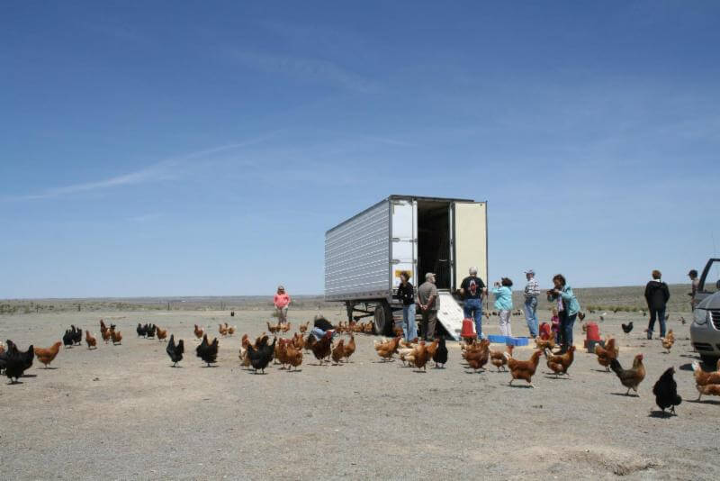 Annual ranch tour and barbecue May 3-4